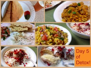 Day 5 of My Desi Detox!