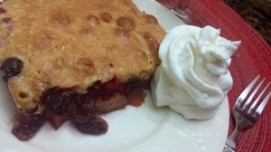 Tangy Fresh Cranberry Apple Cake